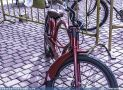 ciclofest201526