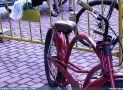 ciclofest201527
