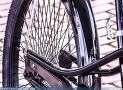 ciclofest201529