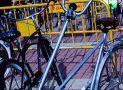 ciclofest201535