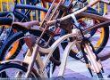 ciclofest201541