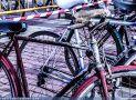 ciclofest201553