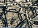 ciclofest201554