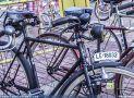 ciclofest201556