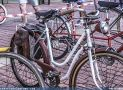 ciclofest201559