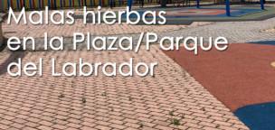 Lamentable estado de la Plaza del Labrador