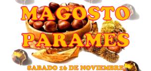 Magosto Paramés 2019