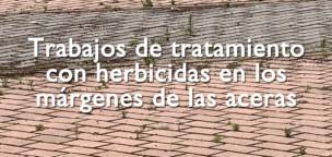 Trabajos de tratamiento con herbicidas en los márgenes de las aceras.