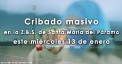 Cribado masivo en la Z.B.S. de Santa María del Páramo este miércoles 13 de enero
