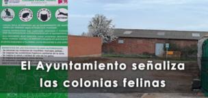 El Ayuntamiento señaliza las colonias felinas