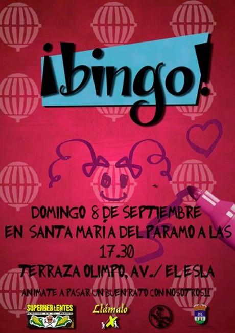 bingo2013