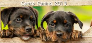 Anuncio: Exposición del Ceso Canino