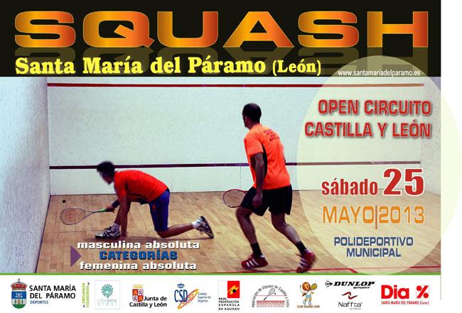 squash2013