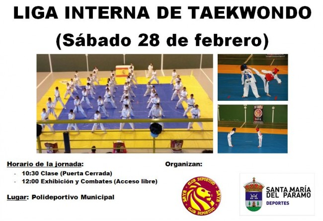 taekwondo2015