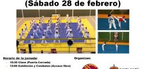 Liga interna de Taekwondo 2015 en Santa María del Páramo
